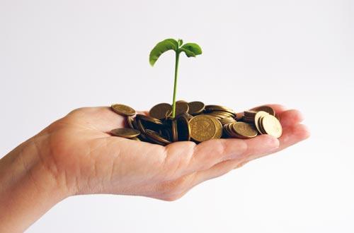 Placements financiers risqués : le trésorier d'une association et la banque reconnus responsables